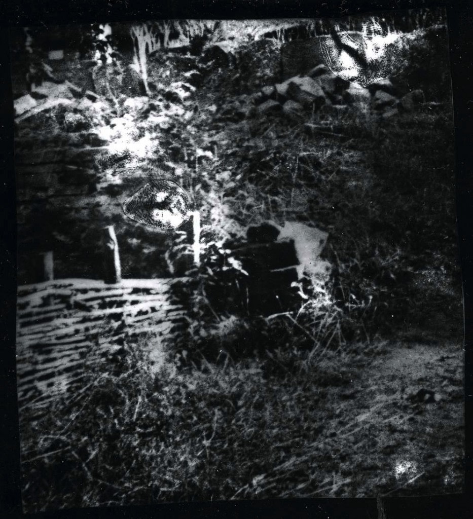 Guillaume Krattinger, Pastorale, 2011, Tirage argentique