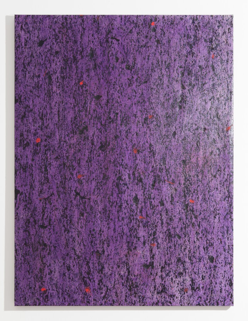 Garrett Pruter, Untitled 27, 2014, Photographic Pigments and Acrylicon Canvas