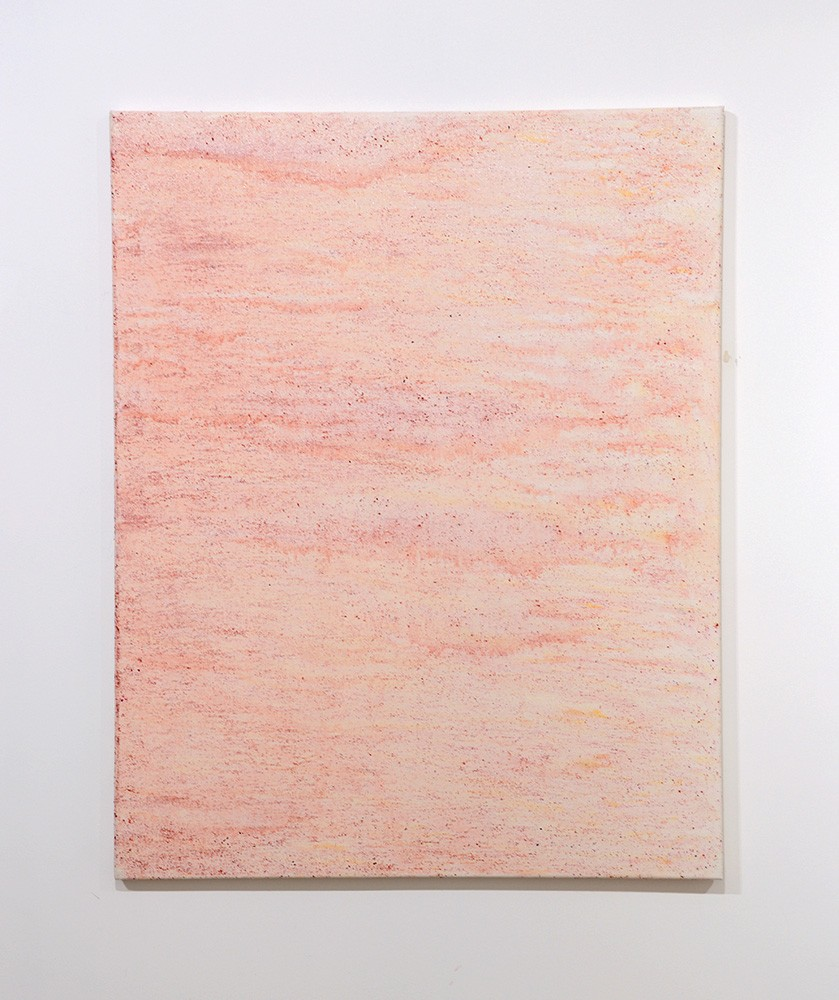 Garrett Pruter, Untitled 6, 2013, Photographic Pigments and Acrylicon Canvas