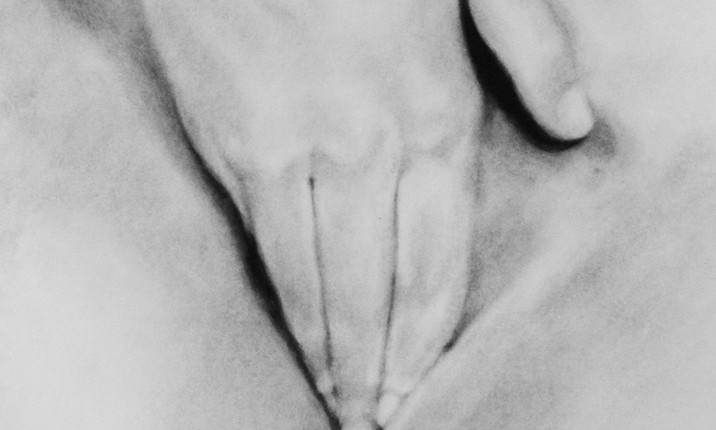 Nicolas Leignel, Phantasme, 2014, Fusain sur papier, 50x65cm